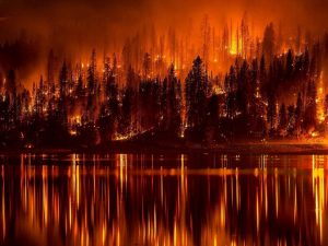 Wildfires, hot summer