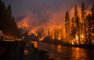 Wildfires, Summer Safety and Firewise